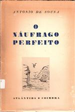 O náufrago perfeito.pdf