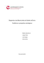 Diagnóstico das Misericórdias do Distrito de Évora.pdf